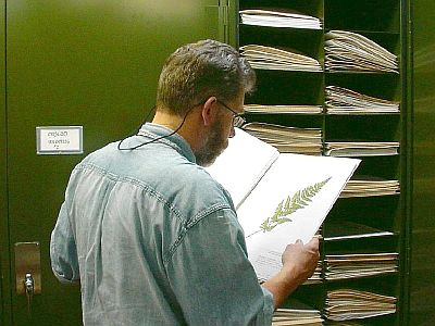 John Maunder using the herbarium at the Provincial Museum
